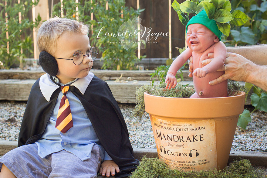 sesion-fotos-harry-potter-bebe-mandragora-kelsey-clouse (4)