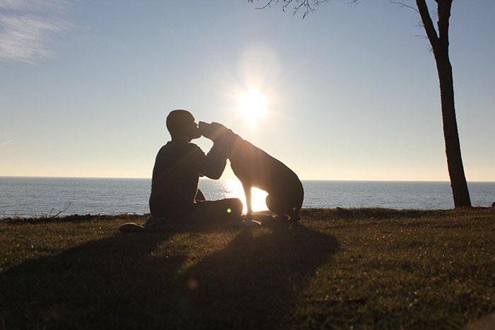 viaje-eeuu-perro-cancer-bella-robert-kugler (8)