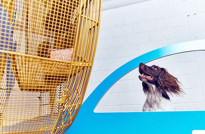 exposicion-arte-perros-play-more-dominic-wilcox-londres (6)