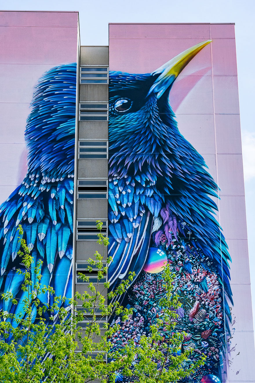 mural-gigante-estornino-arte-urbano-berlin (3)