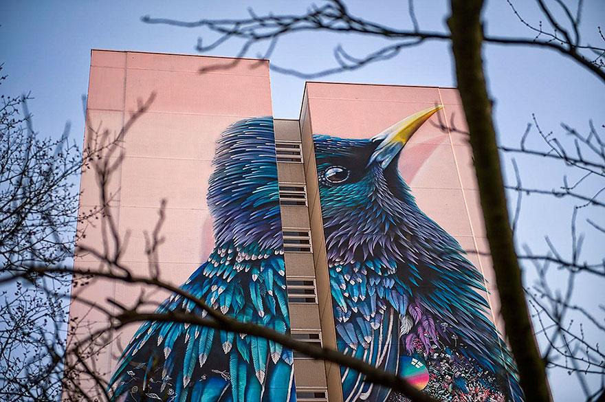 mural-gigante-estornino-arte-urbano-berlin (4)