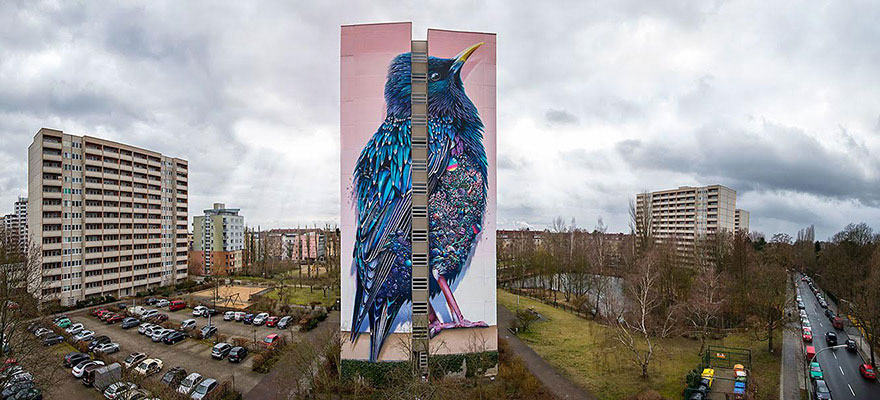mural-gigante-estornino-arte-urbano-berlin (5)