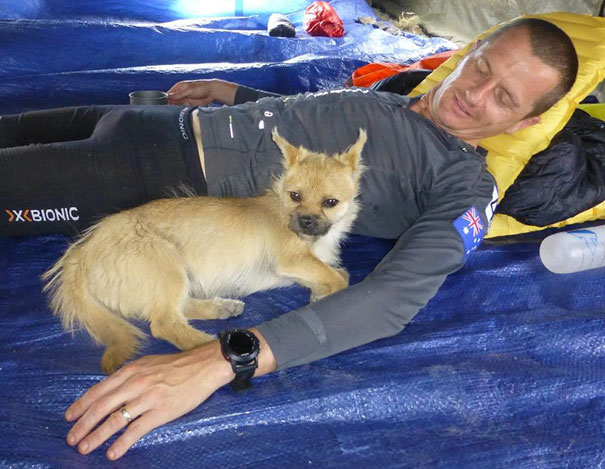 perro-callejero-corredor-maraton-dion-leonard-gobi-china (2)