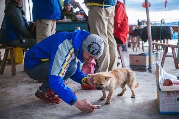 perro-callejero-corredor-maraton-dion-leonard-gobi-china (4)