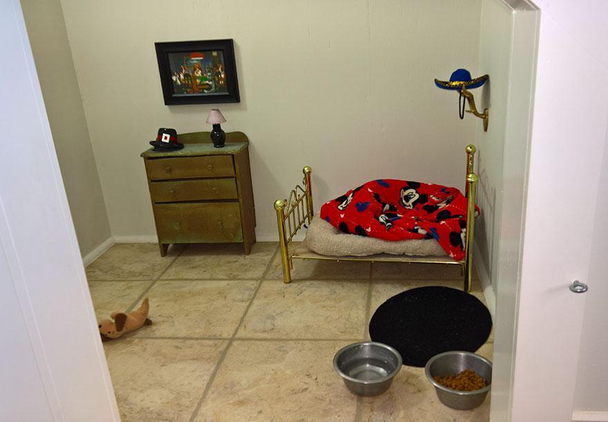 dormitorio-bajo-escaleras-perro-chihuahua-pancho (4)
