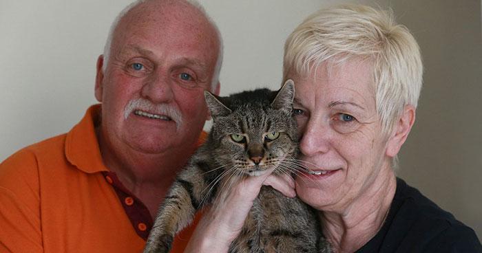 gato-viejo-31-anos-nutmeg (3)