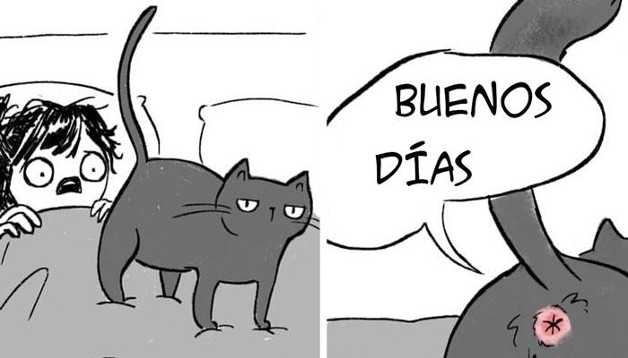 Esta artista ilustra cómo es vivir con gatos