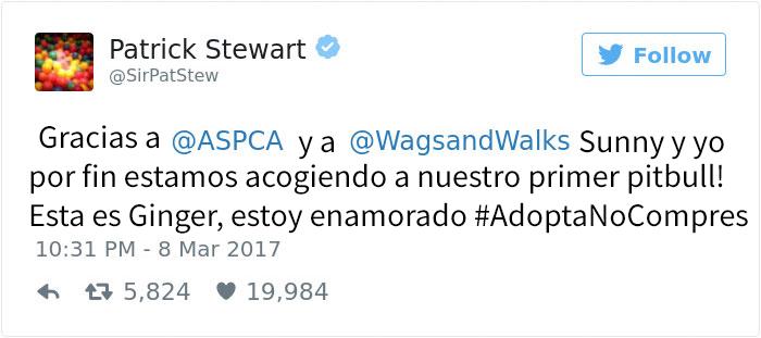patrick-stewart-pitbull-1