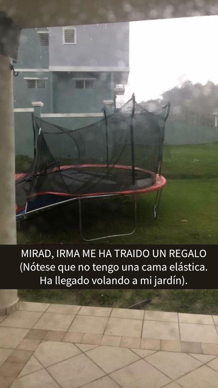 Gracias, Irma