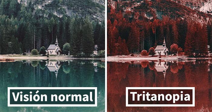 Así es como ve el mundo una persona daltónica con tritanopia