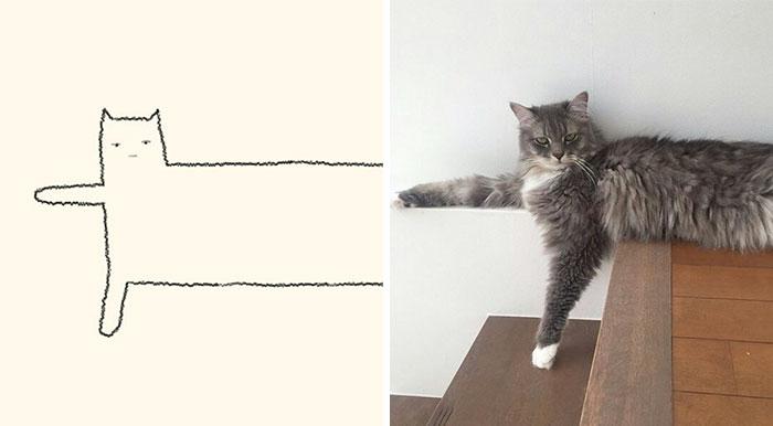 20 Veces Cuando 'Los Dibujos Estúpidos De Gatos' Hicieron Reír A Todos Por Su Precisión