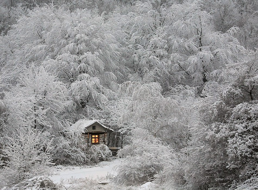 casas-aisladas-naturaleza-25__880