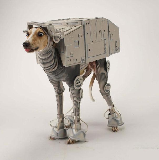 disfraz-mascotas-halloween-361__605