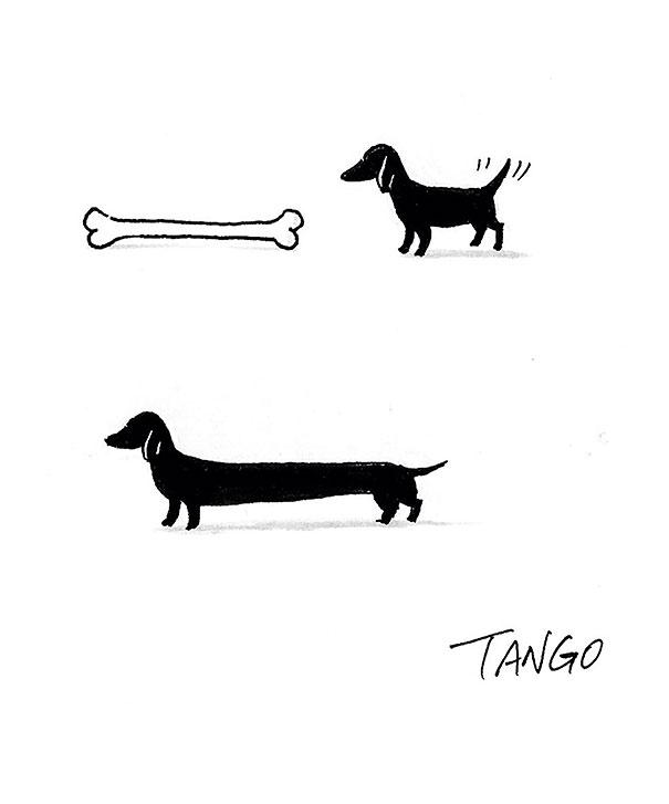 comic-minimalista-animales-shangai-tango- (3)