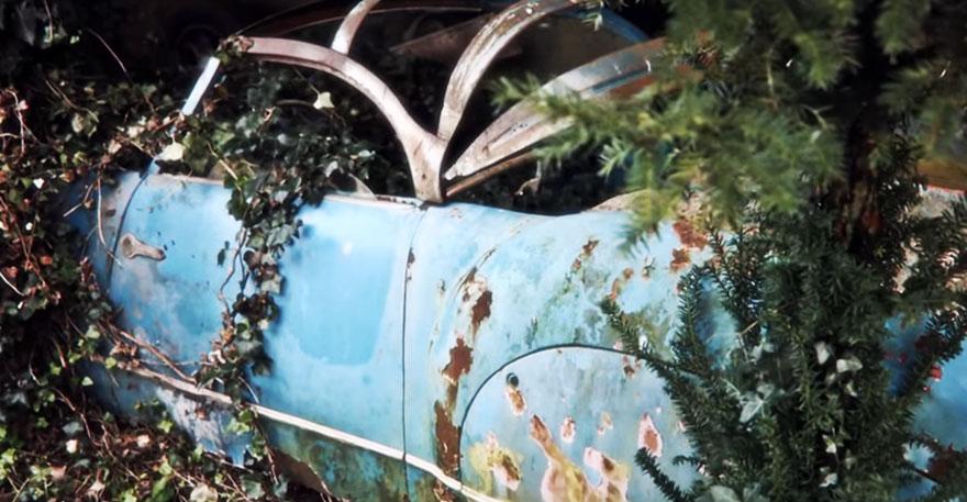 coleccion-coches-clasicos-abandonados-baillon (16)