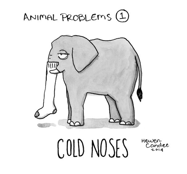 problemas-animales-geoffrey-hewer-candee (9)