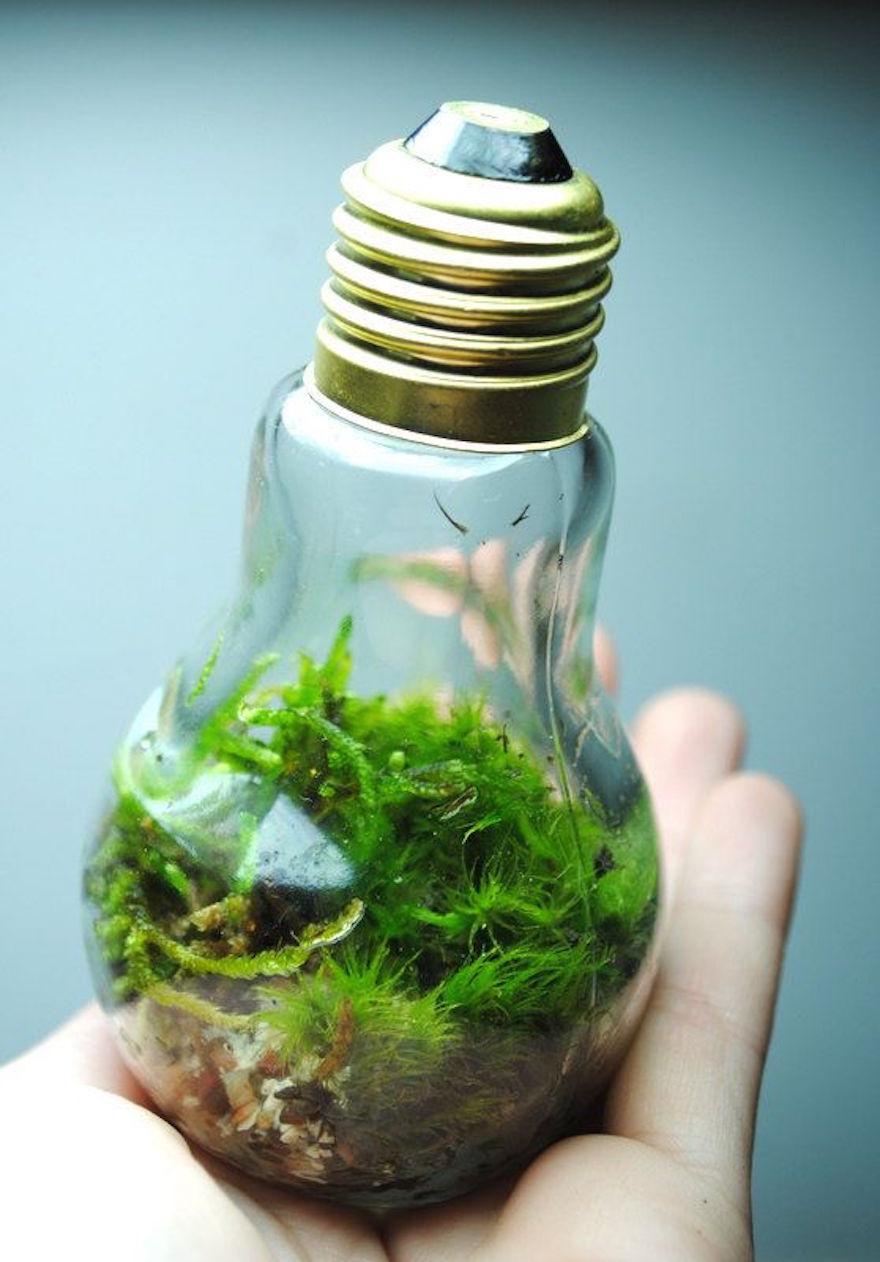 reciclar-bombillas-manualidades- (2)