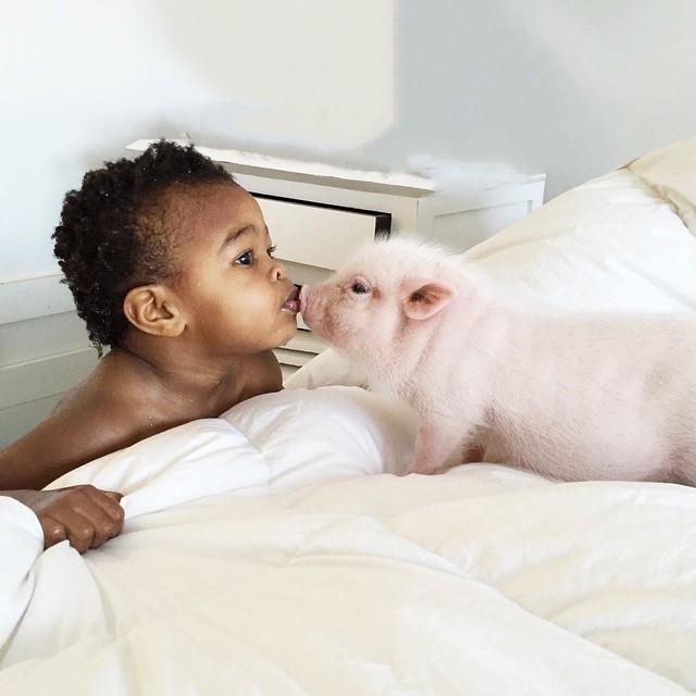 La tierna amistad entre una niña de 2 años y su cerdito