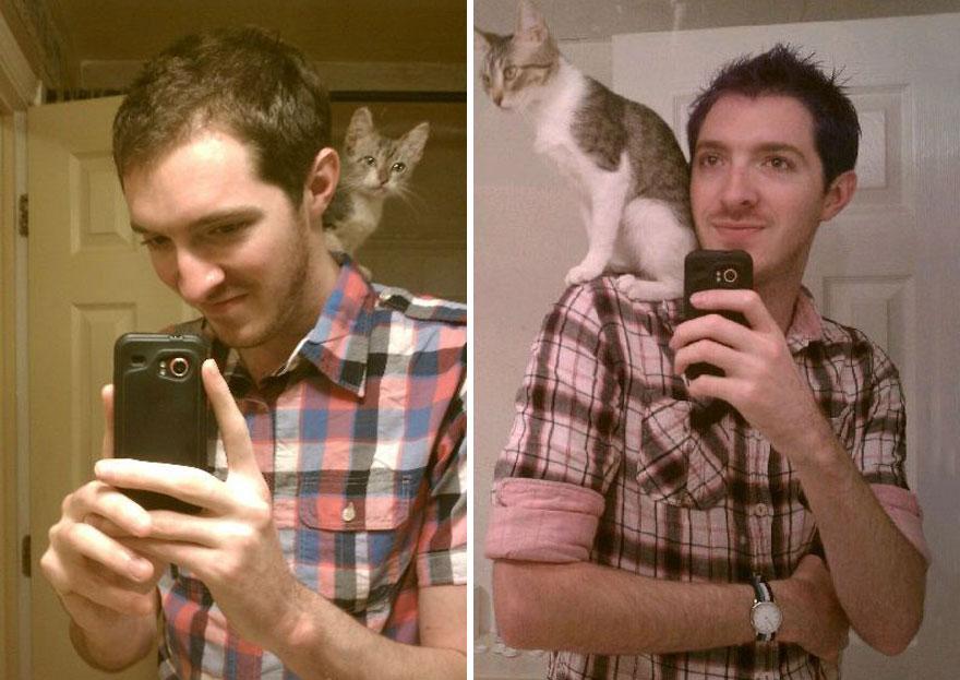 gatos-creciendo-antes-despues (12)
