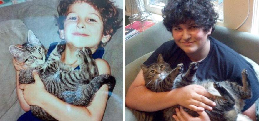 gatos-creciendo-antes-despues (3)
