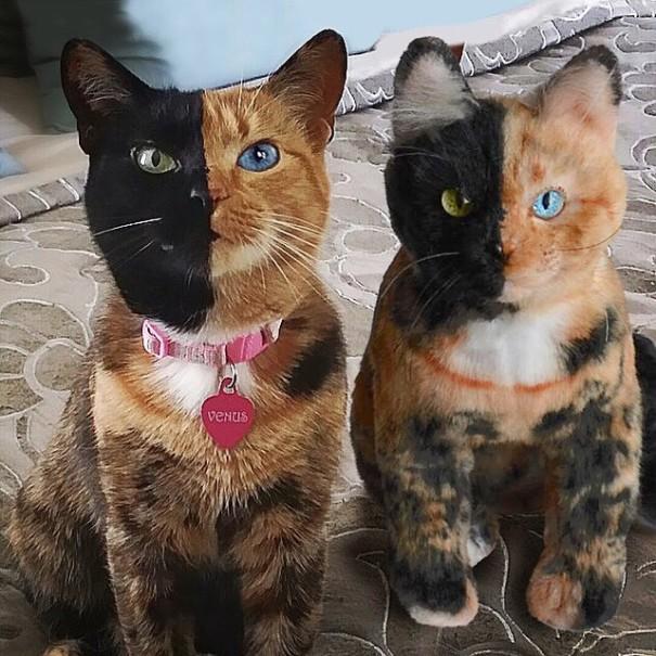 replicas-peluche-animales-mascotas-cuddle-clones (18)