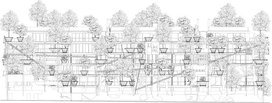 edificio-urbano-arboles-arquitectura-25-verde-luciano-pia-turin (14)