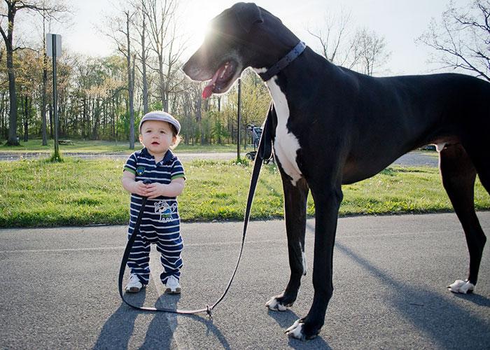 amistad-ninos-perros (1)