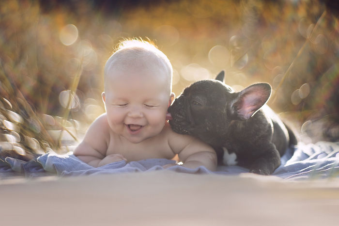 amistad-ninos-perros (11)