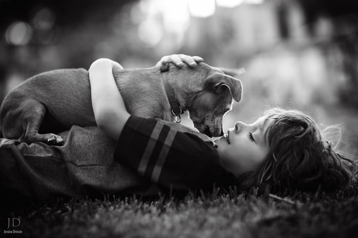 amistad-ninos-perros (12)
