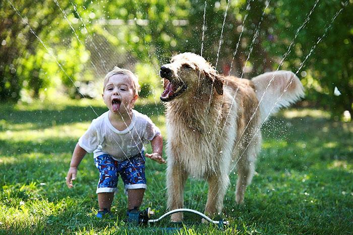 amistad-ninos-perros (13)