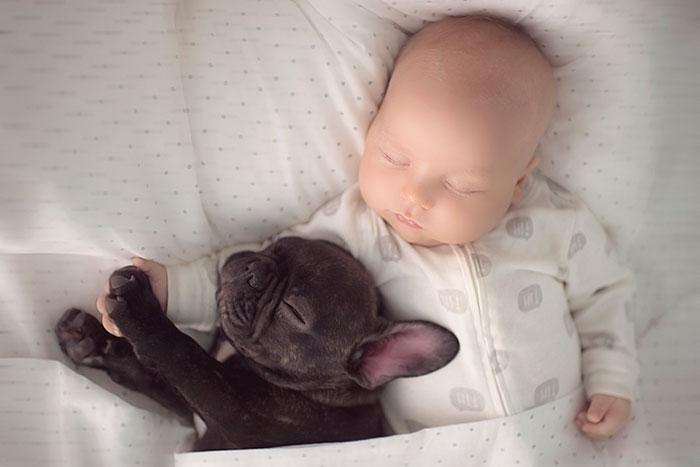 amistad-ninos-perros (16)