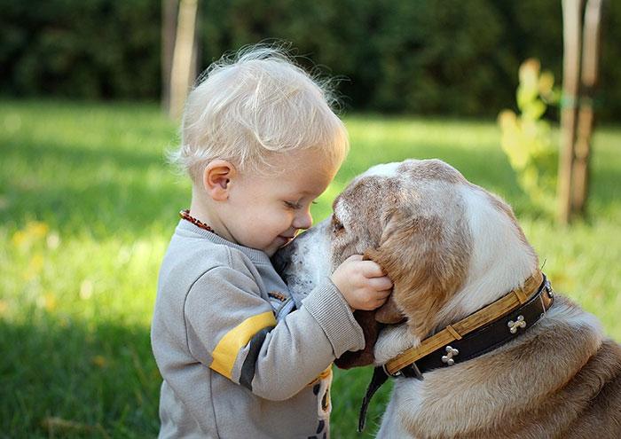 amistad-ninos-perros (17)