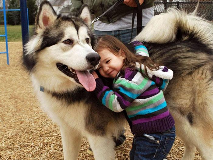 amistad-ninos-perros (4)