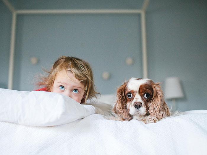 amistad-ninos-perros (5)