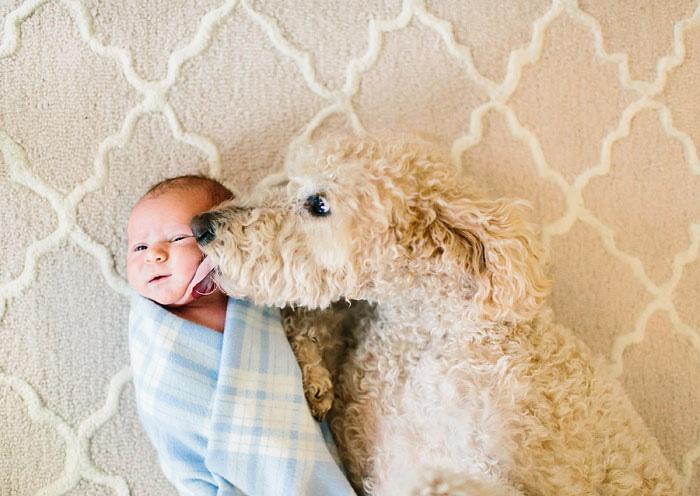amistad-ninos-perros (6)