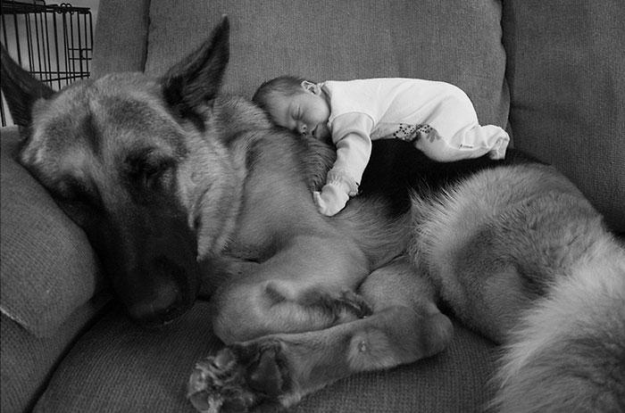23 Fotos adorables que demuestran que tu niño necesita un perro