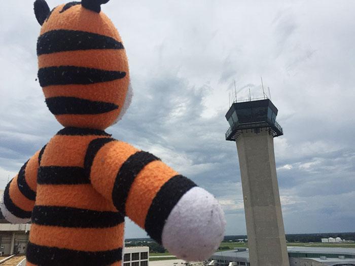 El personal del aeropuerto se lleva de aventuras a este peluche de Hobbes olvidado