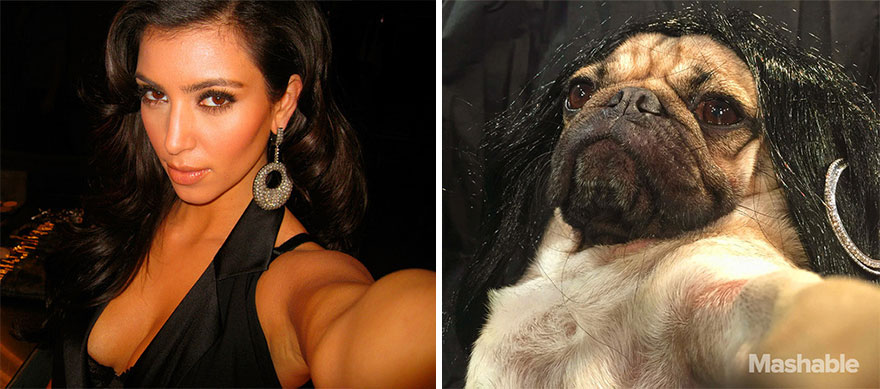 perro-doug-pug-recrea-kardashian-selfies (3)