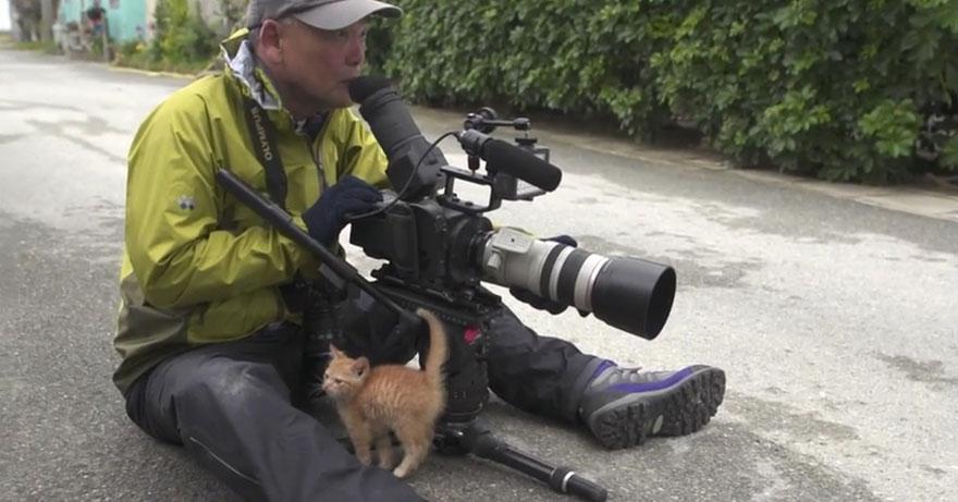 gatito-callejero-amistad-fotografo-mitsuaki-iwago (1)
