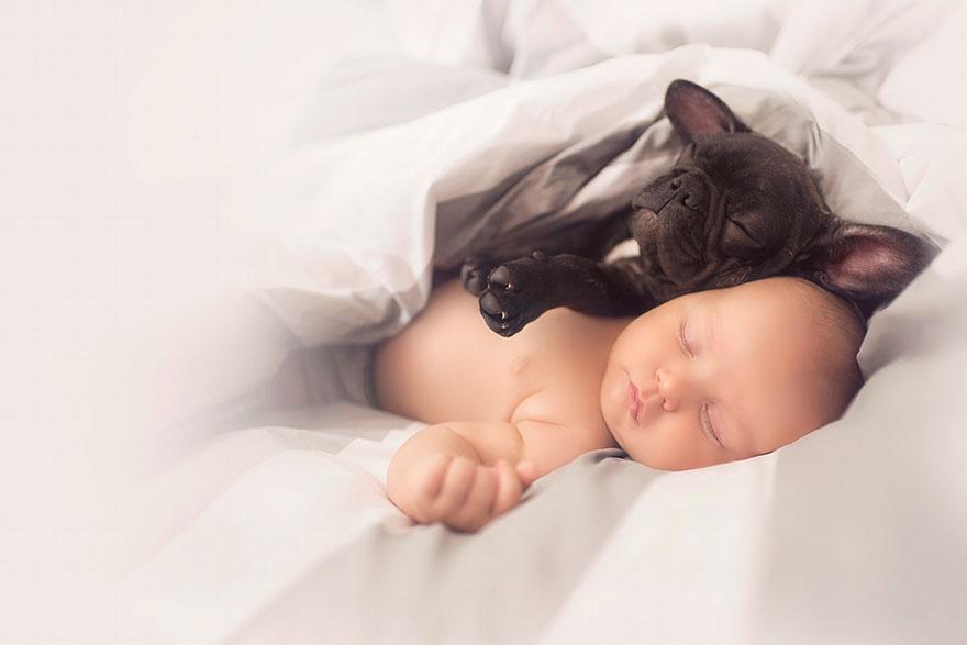 Un bebé y un bulldog nacidos en el mismo día se creen que son hermanos y hacen todo juntos