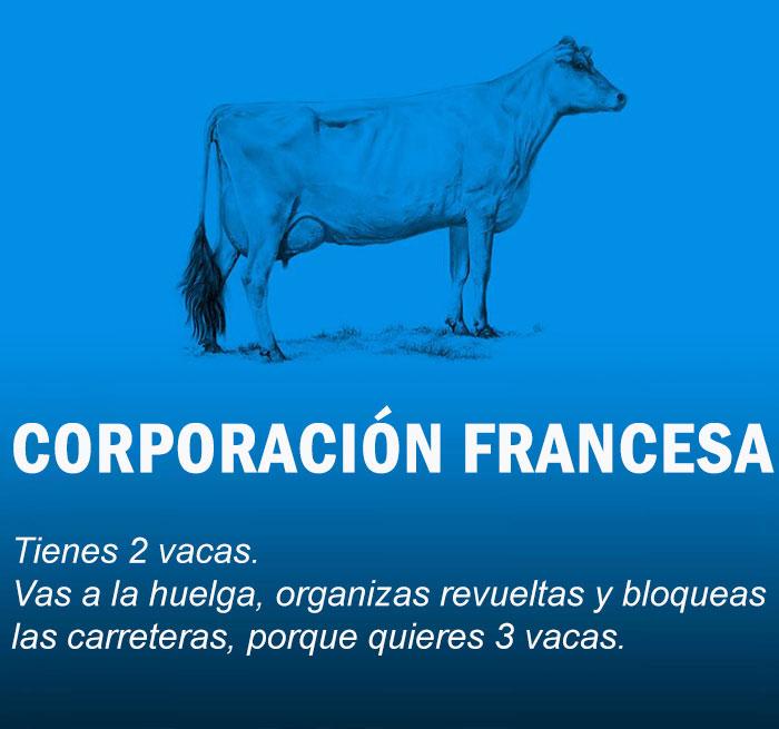 Estas 2 vacas te explican economía mejor que en clase