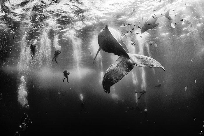 Los ganadores de la edición de 2015 del Concurso de fotos de viajeros de National Geographic