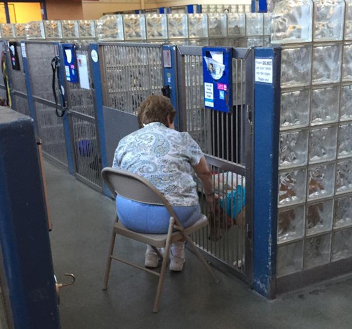 Esta mujer va a leer a los perros viejos de los refugios para que se sientan menos solos