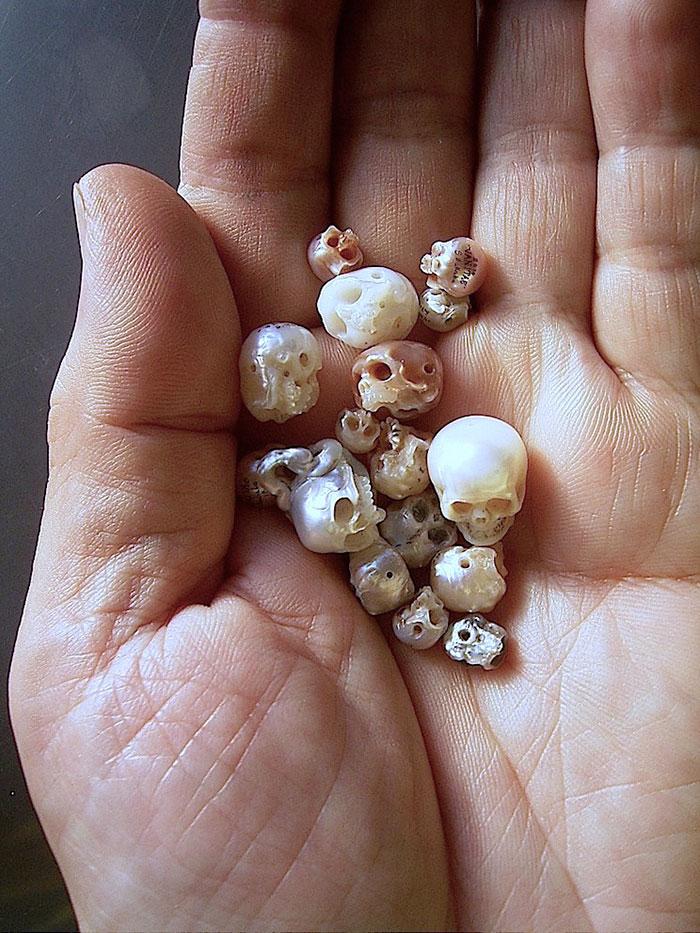 perlas-talladas-calaveras-vanitas-shinji-nakaba (8)