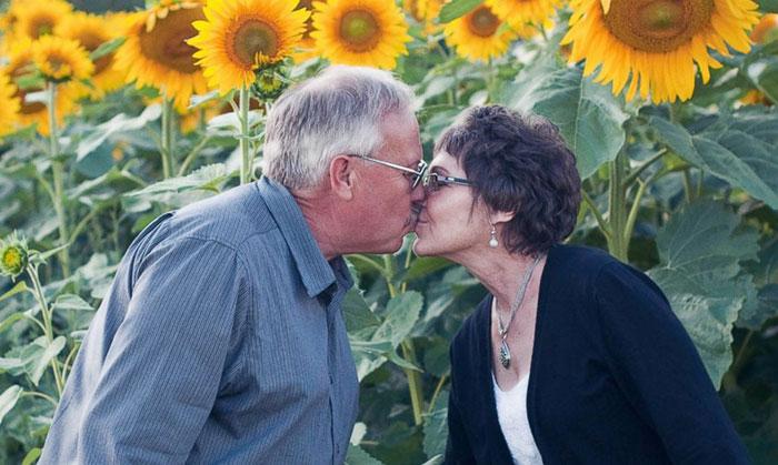 Este hombre plantó 400 acres de girasoles para recordar a su esposa fallecida por cáncer y vende las semillas para investigar la enfermedad