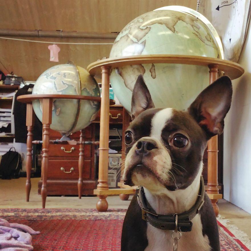 ultimo-fabricante-globos-terraqueos-artesanos-bellerby-globemakers (7)