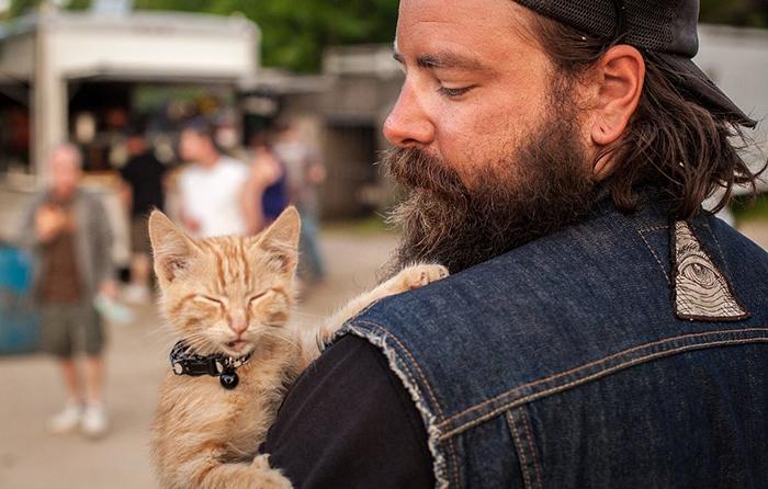 Un motorista salva a un gatito herido y continúa con él su viaje cruzando el país