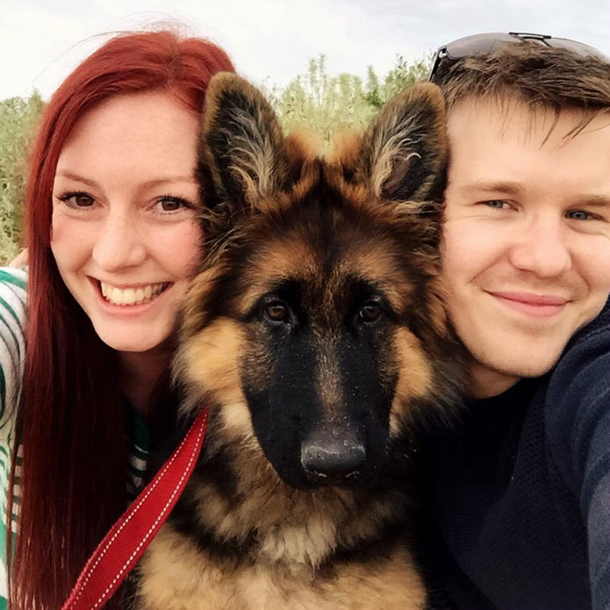 crecimiento-perro-nasra-8-meses-alex-dennison-ashley-lewis (5)