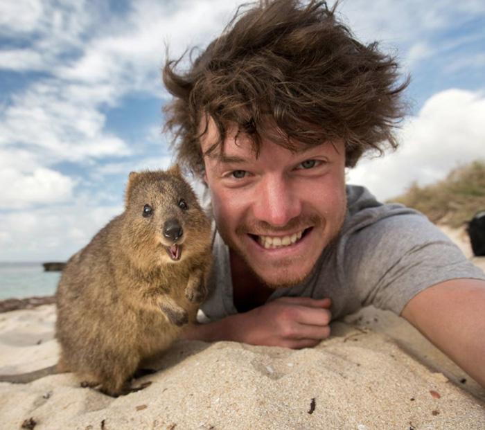 Este hombre es un experto en hacerse selfies con animales