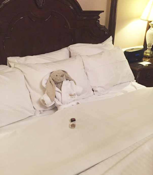 aventuras-conejo-peluche-perdido-hotel-adare-manor (4)